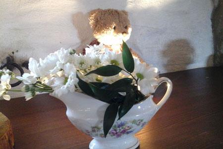 Svatby - kopretiny - chryzantémy