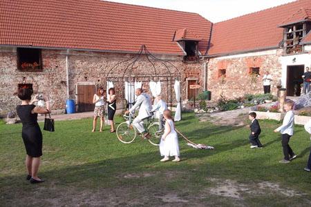 Svatby - slunečnice II.