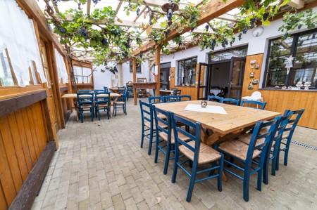 11 - Hotel Černice - ubytování: - Vnitřní a venkovní prostory společné prostory