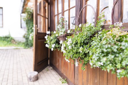 26 - Hotel Černice - ubytování: - Vnitřní a venkovní prostory společné prostory